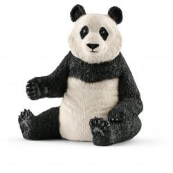 Große Pandabärin