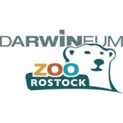 Darwineumsführer Zoo Rostock