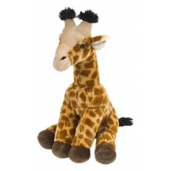Giraffe Baby gross