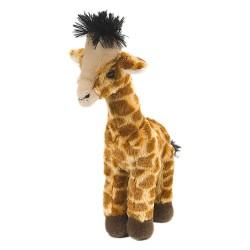 Giraffe Baby mittel