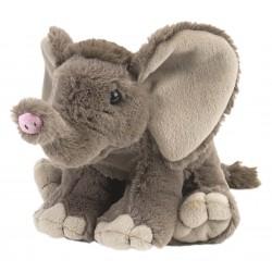 Afrikanischer Elefant Baby...
