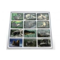 Magnete Otter