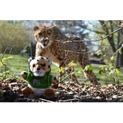 Gepard mit Allwetterzoo-Hoody